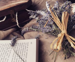 books, jewelry, and lavender image
