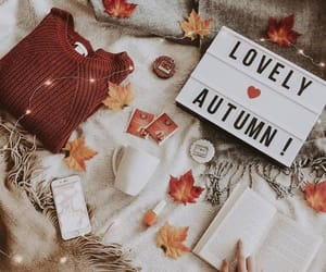 autumn, lovely, and fall image