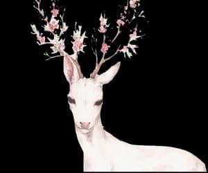 amazing, artiste, and deer image