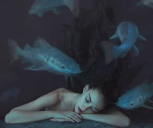 art, siren, and fantasy image