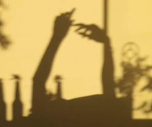 shadows and vintage image