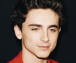 beautiful boy, timothee chalamet, and beautiful eyes image