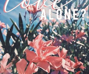 aesthetics, flowers, and jin image