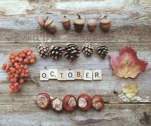 art, autumn, and photo image