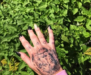 hope, handtatto, and lion image