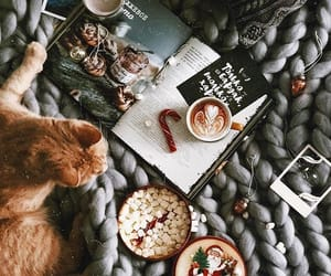 cat, christmas, and book image