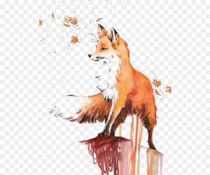 drawing, fox, and painting image