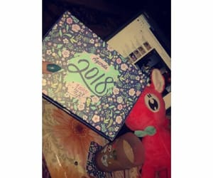 agenda, diary, and girly image