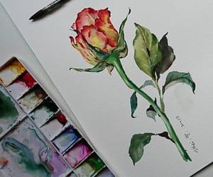 art, rose, and beautiful image