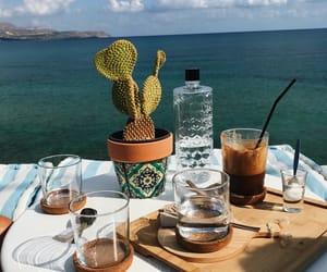 autumn, cactus, and coffe image