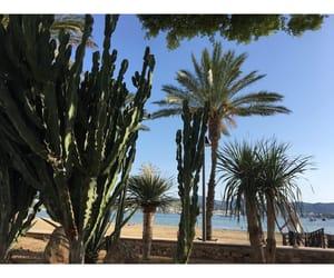 beach, green, and ibiza image