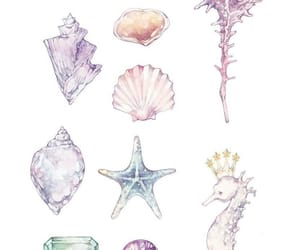 shell, gems, and star image