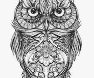 coruja and tattoo image