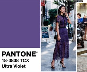 colors, trending, and pantone color trends image