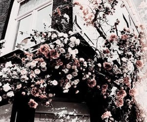flowers, building, and nature image