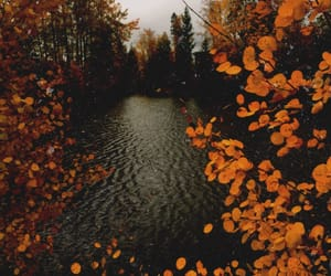 air, autumn, and candle image