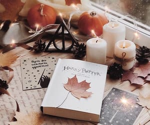 autumn, book, and brown image