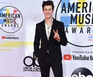 shawn mendes and ama's 2018 image