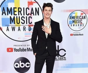 shawn mendes and amas image