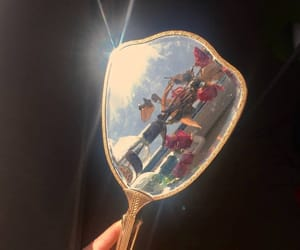 aesthetic, mirror, and flowers image