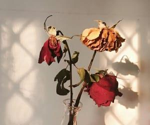 articles, heartbreak, and romance image
