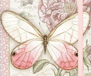 butterfly, memories, and carte postal image