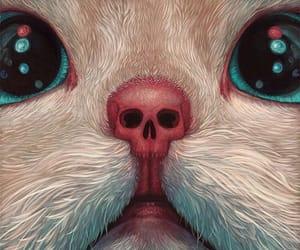 cat, magic, and skull image