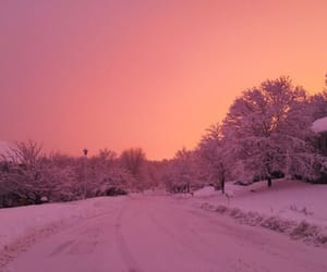 snow, pink, and winter image
