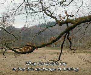 claire denis, landscape, and nature image
