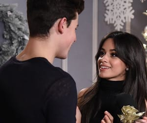 i heart, camila cabello, and shawn mendes image