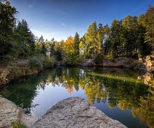 forest, idyllic, and mountain range image