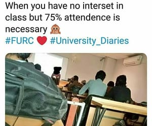 college, funny, and meme image