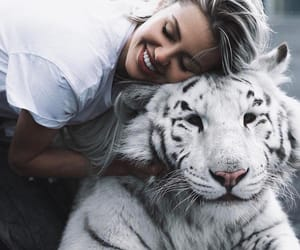 animal, wallpaper, and tiger image
