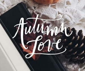 autumn, love, and fall image