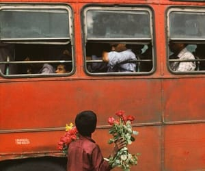 flowers, boy, and bus image