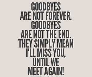 goodbye, quotes, and end image