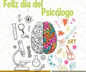 psychologist, psicólogo, and psychology image
