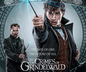 fantastic beasts, albus dumbledore, and eddie redmayne image