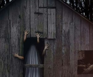 creepy, scary, and woods image