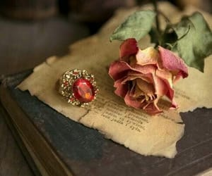 beauty, book, and bookish image