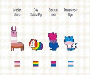 bear, lesbian, and bi image