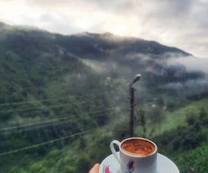 coffee and ele bele image