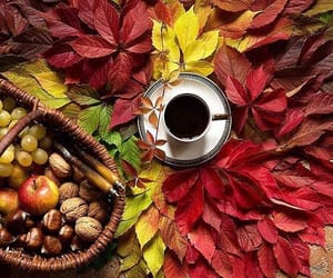 autumn, cup, and tea image