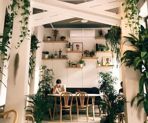 home sweet home, interior, and plants image