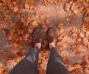 adventure, autumn, and cold image
