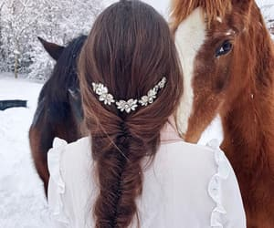 animals, braids, and brown image