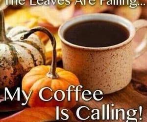 breezy, coffee, and new season image