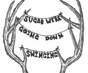 antlers, down, and fall out boy image