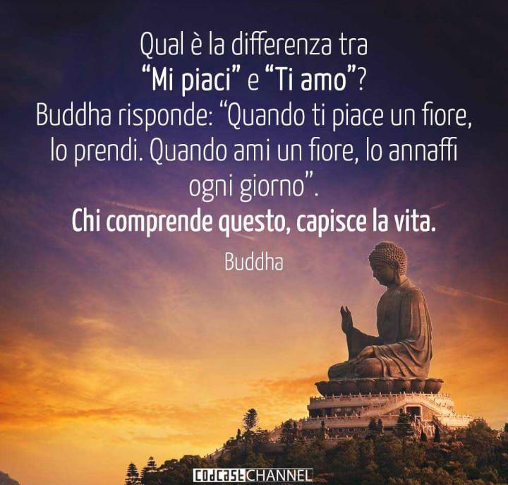Frasi Italiane Uploaded By Rossana Anselmi On We Heart It