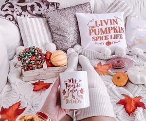 autumn, october, and pumpkin image
